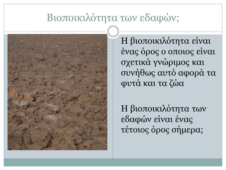 Βιοποικιλότητα των εδαφών; Η βιοποικιλότητα είναι ένας όρος ο οποιος είναι σχετικά γνώριμος και συνήθως αυτό αφορά τα φυτά και τα ζώα Η βιοποικιλότητα των εδαφών είναι ένας τέτοιος όρος σήμερα;