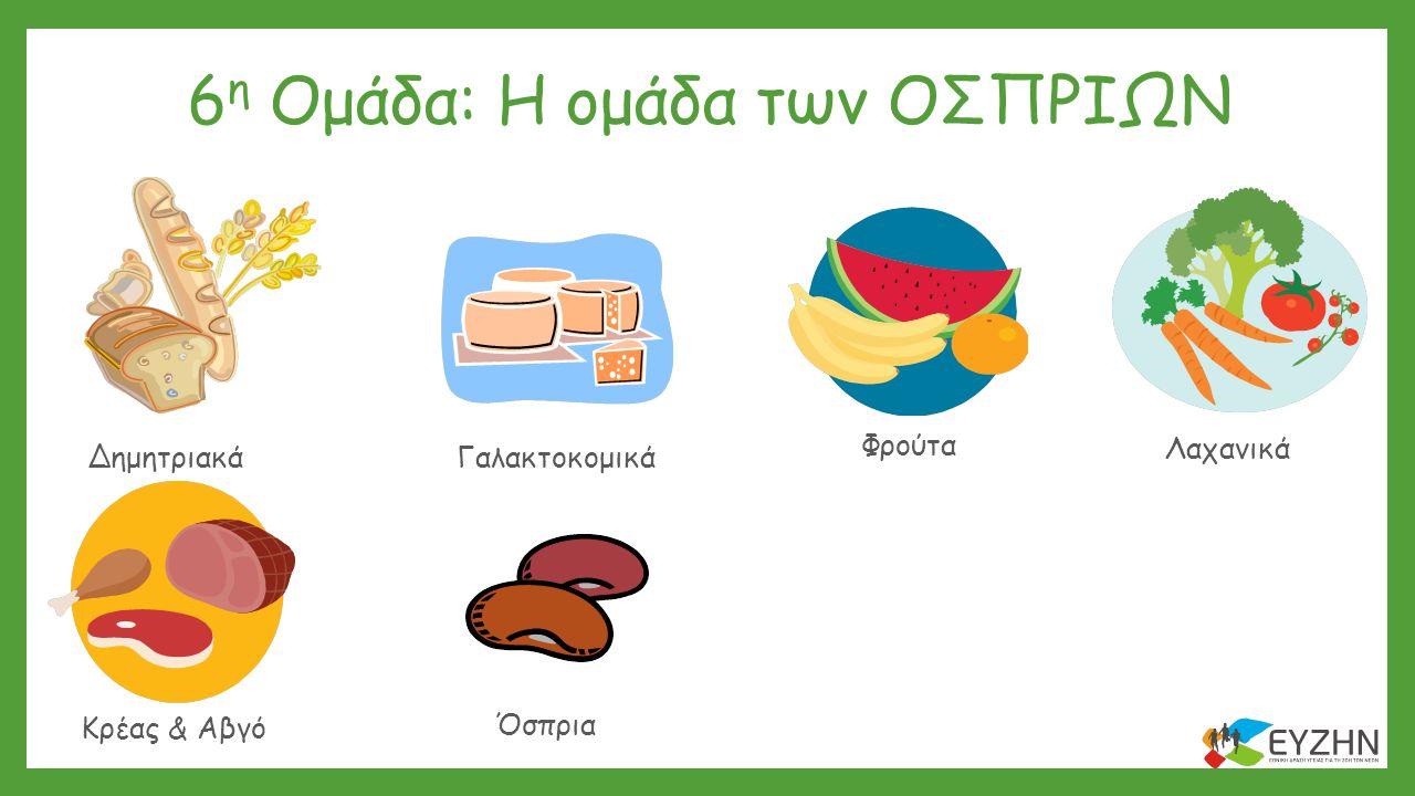 6 η Ομάδα: Η ομάδα των ΟΣΠΡΙΩΝ Δημητριακά Λαχανικά Γαλακτοκομικά Λίπη & ΈλαιαΓλυκά & Σνακ Κρέας & Αβγό Φρούτα Όσπρια