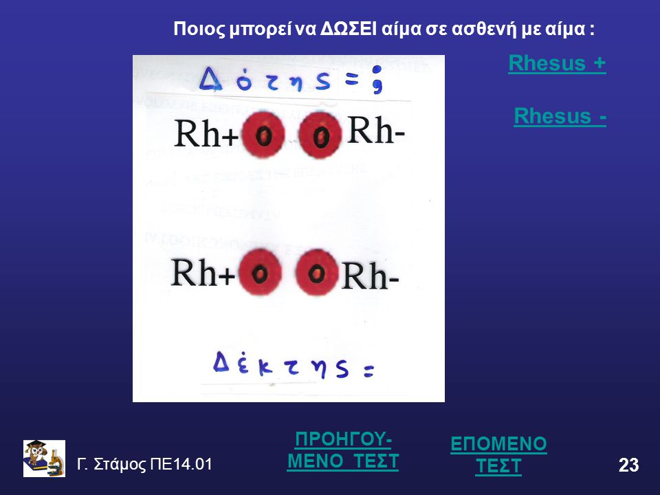 Γ. Στάμος ΠΕ14.01 23 ΕΠΟΜΕΝΟ ΤΕΣΤ Rhesus + Rhesus + Rhesus -Rhesus - ΠΡΟΗΓΟΥ- ΜΕΝΟ ΤΕΣΤ Ποιος μπορεί να ΔΩΣΕΙ αίμα σε ασθενή με αίμα :