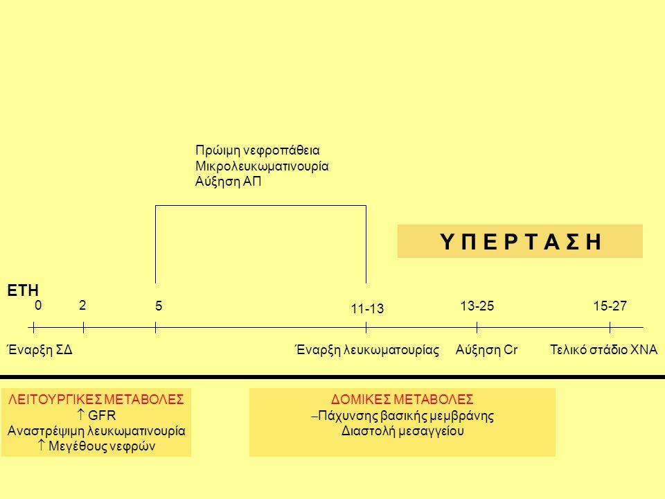 Έναρξη ΣΔ ΛΕΙΤΟΥΡΓΙΚΕΣ ΜΕΤΑΒΟΛΕΣ  GFR Αναστρέψιμη λευκωματινουρία  Μεγέθους νεφρών 02 5 11-13 Πρώιμη νεφροπάθεια Μικρολευκωματινουρία Αύξηση ΑΠ 13-25 Έναρξη λευκωματουρίαςΑύξηση Cr 15-27 Τελικό στάδιο ΧΝΑ Υ Π Ε Ρ Τ Α Σ Η ΔΟΜΙΚΕΣ ΜΕΤΑΒΟΛΕΣ  Πάχυνσης βασικής μεμβράνης Διαστολή μεσαγγείου ΕΤΗ