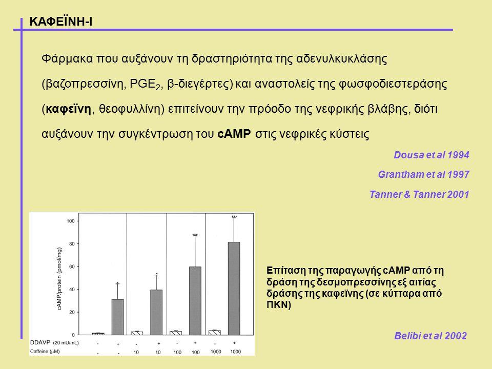 Φάρμακα που αυξάνουν τη δραστηριότητα της αδενυλκυκλάσης (βαζοπρεσσίνη, PGE 2, β-διεγέρτες) και αναστολείς της φωσφοδιεστεράσης (καφεϊνη, θεοφυλλίνη)