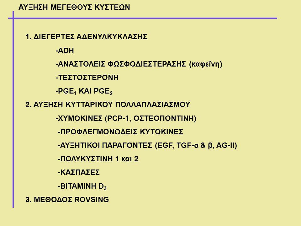 1. ΔΙΕΓΕΡΤΕΣ ΑΔΕΝΥΛΚΥΚΛΑΣΗΣ -ADH -ΑΝΑΣΤΟΛΕΙΣ ΦΩΣΦΟΔΙΕΣΤΕΡΑΣΗΣ (καφεϊνη) -ΤΕΣΤΟΣΤΕΡΟΝΗ -PGE 1 ΚΑΙ PGE 2 2. ΑΥΞΗΣΗ ΚΥΤΤΑΡΙΚΟΥ ΠΟΛΛΑΠΛΑΣΙΑΣΜΟΥ -ΧΥΜΟΚΙΝΕΣ