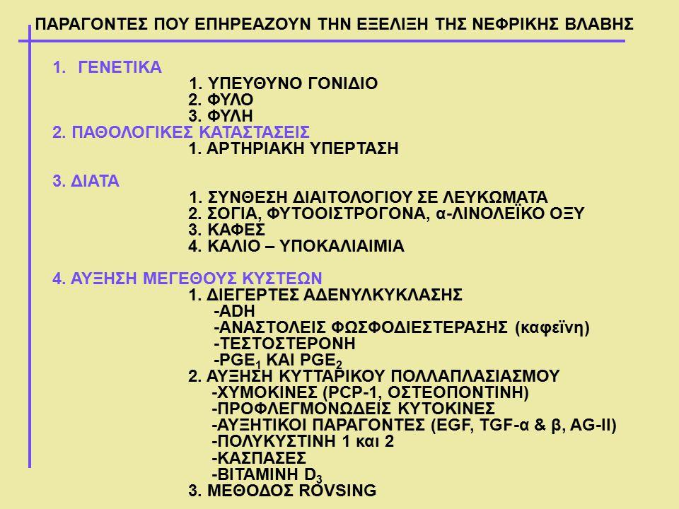 Σημασία της αύξησης του μεγέθους των κύστεων στην εξέλιξη της ΧΝΑ ΑΥΞΗΣΗ ΜΕΓΕΘΟΥΣ ΚΥΣΤΕΩΝ ΣΤΟΝ ΧΡΟΝΟ ΕΤΟΣ198819941999 Ασθενή Α112015682217 Ασθενής Β197527053728 ΕΤΟΣ199019992003 Torres VE 2005