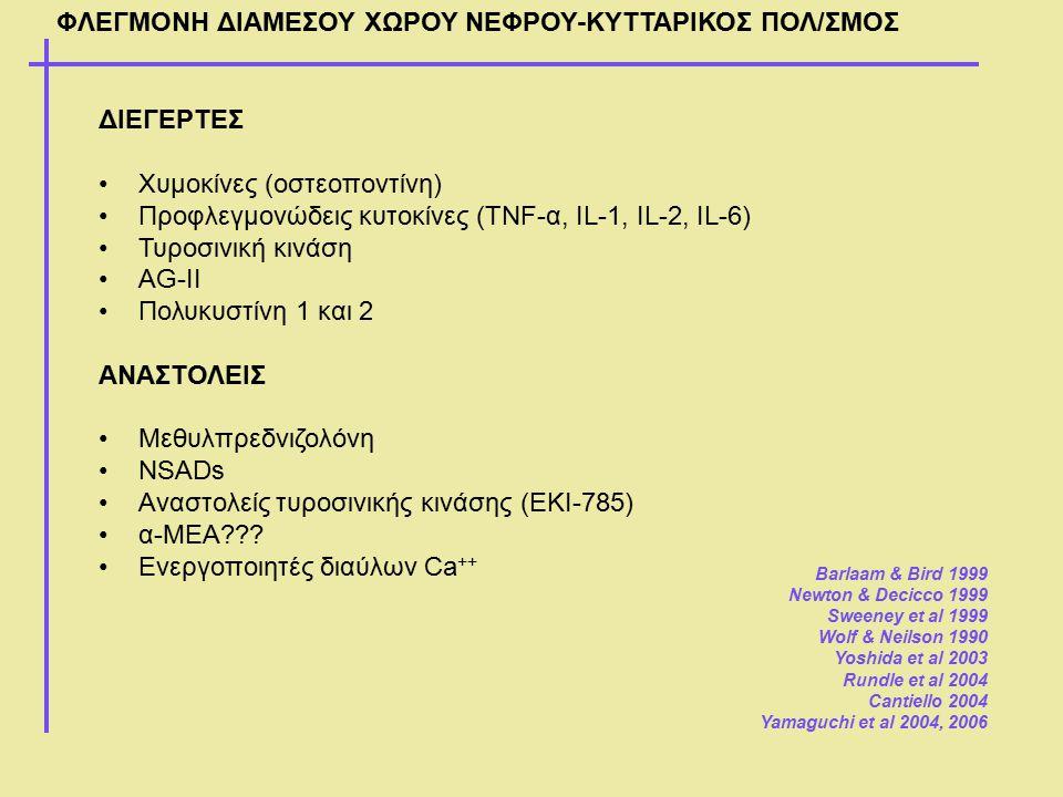 ΦΛΕΓΜΟΝΗ ΔΙΑΜΕΣΟΥ ΧΩΡΟΥ ΝΕΦΡΟΥ-ΚΥΤΤΑΡΙΚΟΣ ΠΟΛ/ΣΜΟΣ ΔΙΕΓΕΡΤΕΣ Χυμοκίνες (οστεοποντίνη) Προφλεγμονώδεις κυτοκίνες (TNF-α, IL-1, IL-2, IL-6) Τυροσινική κ
