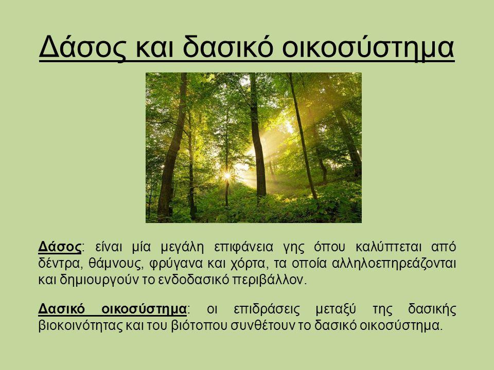 Δάσος και δασικό οικοσύστημα Δάσος: είναι μία μεγάλη επιφάνεια γης όπου καλύπτεται από δέντρα, θάμνους, φρύγανα και χόρτα, τα οποία αλληλοεπηρεάζονται και δημιουργούν το ενδοδασικό περιβάλλον.