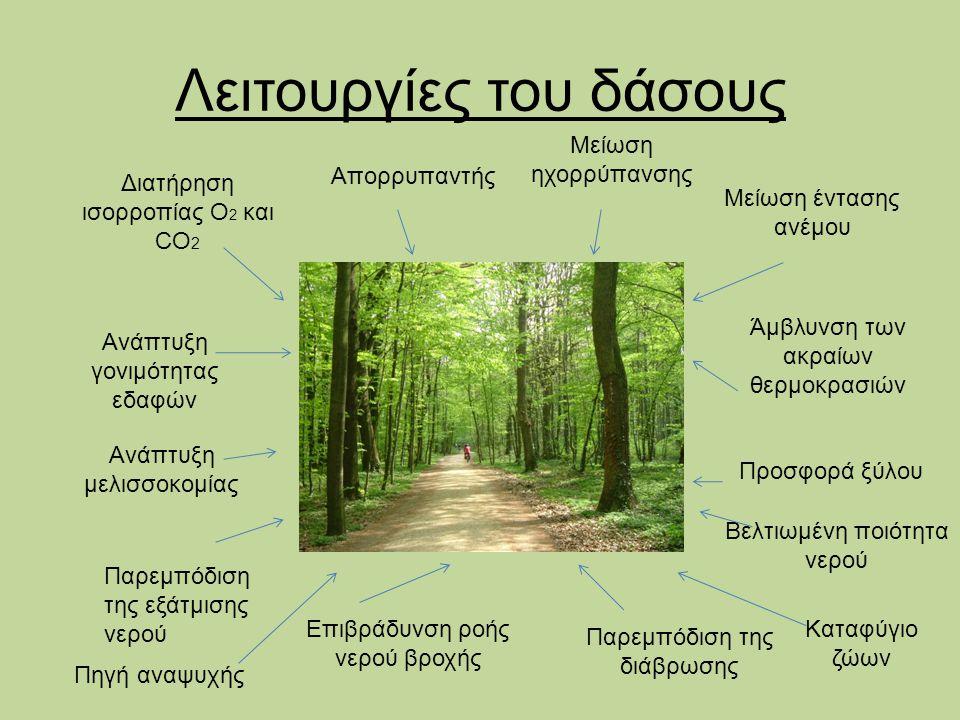 Λειτουργίες του δάσους Διατήρηση ισορροπίας O 2 και CO 2 Απορρυπαντής Μείωση ηχορρύπανσης Μείωση έντασης ανέμου Άμβλυνση των ακραίων θερμοκρασιών Βελτ