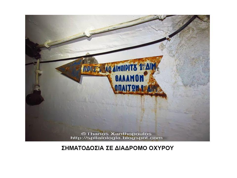 ΣΗΜΑΤΟΔΟΣΙΑ ΣΕ ΔΙΑΔΡΟΜΟ ΟΧΥΡΟΥ