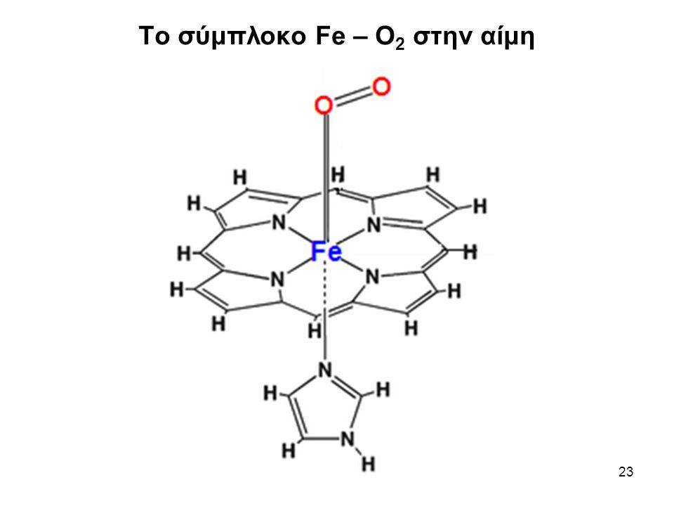 23 Το σύμπλοκο Fe – O 2 στην αίμη