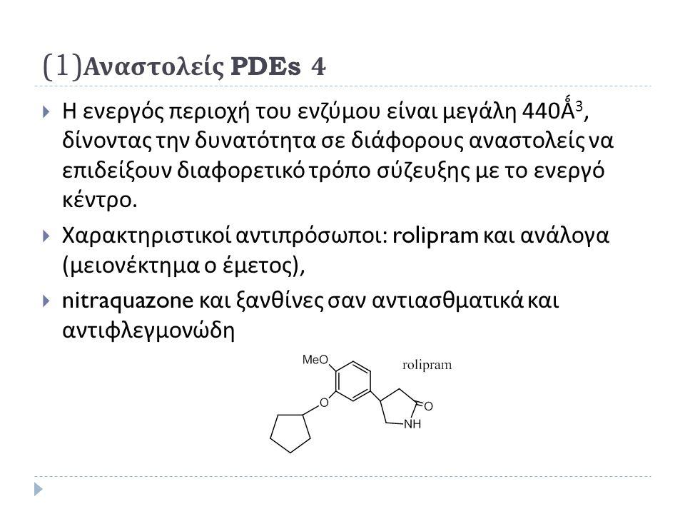 (1) Αναστολείς PDEs 4  Η ενεργός περιοχή του ενζύμου είναι μεγάλη 440 Ǻ 3, δίνοντας την δυνατότητα σε διάφορους αναστολείς να επιδείξουν διαφορετικό