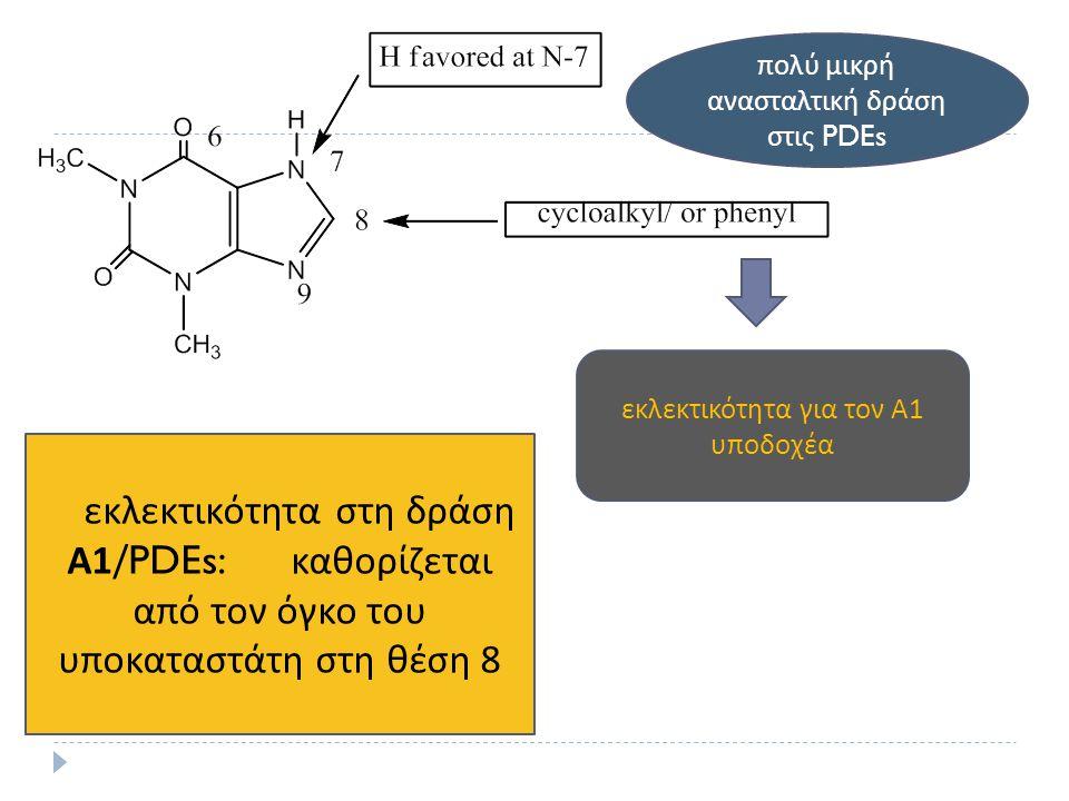 εκλεκτικότητα για τον Α 1 υ π οδοχέα π ολύ μικρή ανασταλτική δράση στις PDEs H εκλεκτικότητα στη δράση Α 1/PDEs: καθορίζεται α π ό τον όγκο του υ π οκ