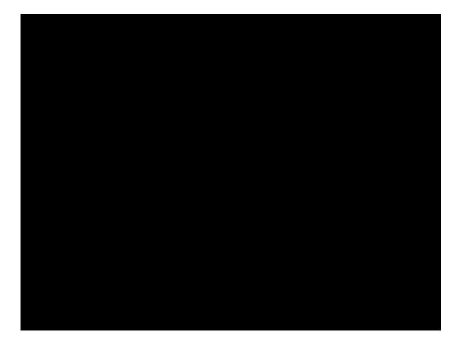 Ασημακόπουλος Λευτέρης Βαλσαμής Ηλίας Βλάντι Ρολάντ Γκρέμου Ελένη Διακάτος Γιάννης Κοκκόλη Ασπασία Κουταλά Ελευθερία Παπάς Μάκης Πατρικίου Αναστασία Τζαμαρέλου Αφροδίτη Υπεύθυνος Καθηγητής Δαλαμάγκας Κωνσταντίνος
