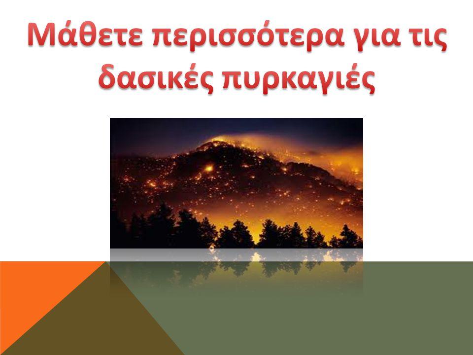Τύποι δασικών πυρκαγιών Πυρκαγιές εδάφους ή υπόγειες, οι οποίες καίνε την οργανική ύλη κάτω από την επιφάνεια του φυλλοστρώματος του δάσους.