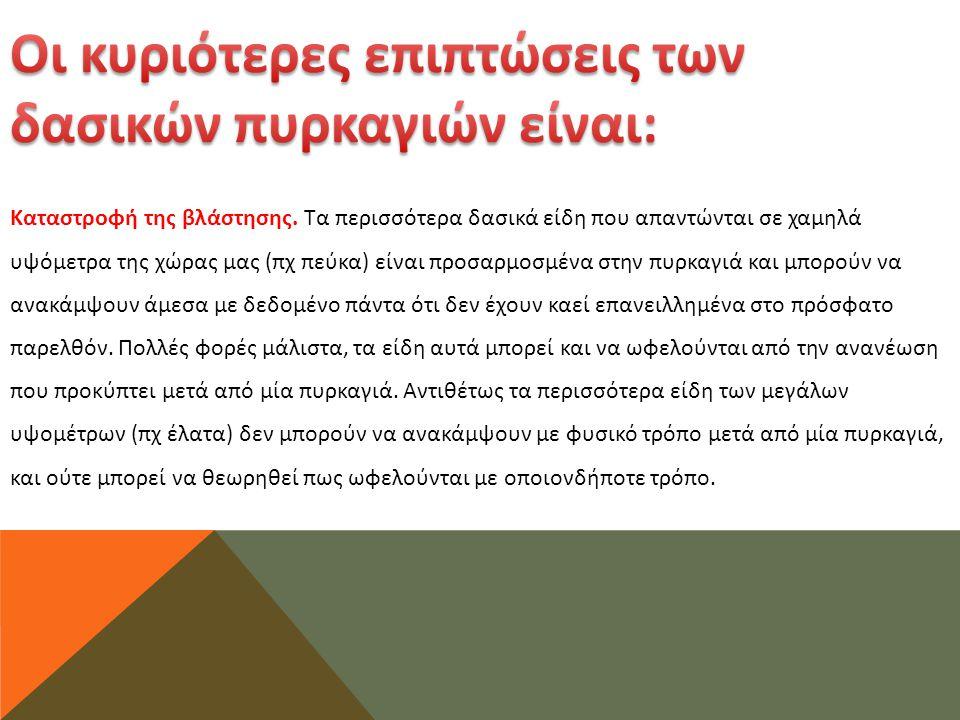 Το παράδειγμα της Βαρκελώνης και οι ομοιότητες με την Αθήνα Η τσιμεντοποίηση του παραλιακού μετώπου συνιστά στην πράξη την τραγική αποτυχία του «αθηναϊκού μοντέλου».