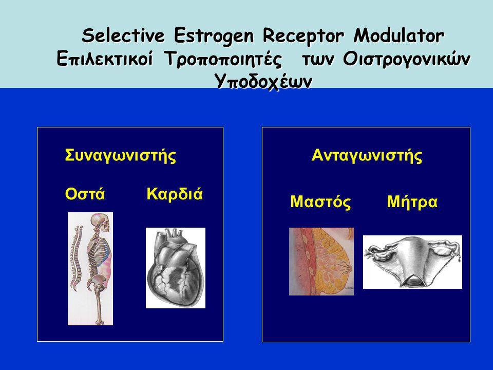 Συναγωνιστής ΟστάΚαρδιά Aνταγωνιστής ΜαστόςΜήτρα Selective Estrogen Receptor Modulator Επιλεκτικοί Τροποποιητές των Οιστρογονικών Υποδοχέων