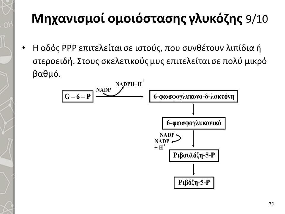 Μηχανισμοί ομοιόστασης γλυκόζης 9/10 Η οδός ΡΡΡ επιτελείται σε ιστούς, που συνθέτουν λιπίδια ή στεροειδή.