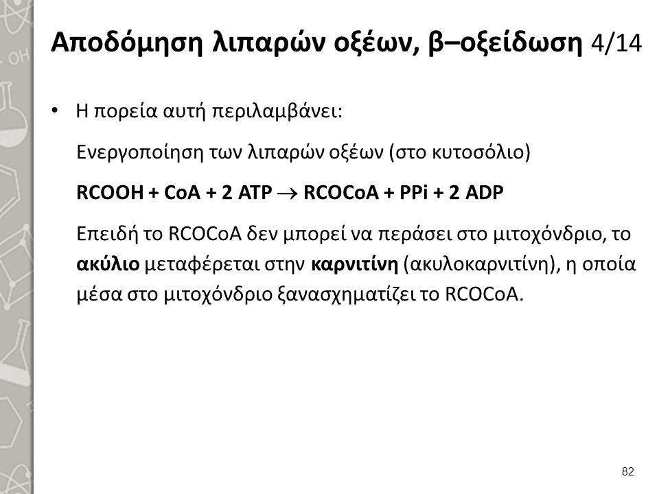 Αποδόμηση λιπαρών οξέων, β–οξείδωση 4/14 Η πορεία αυτή περιλαμβάνει: Ενεργοποίηση των λιπαρών οξέων (στο κυτοσόλιο) RCOOH + CoA + 2 ATP  RCOCoA + PPi + 2 ADP Επειδή το RCOCoA δεν μπορεί να περάσει στο μιτοχόνδριο, το ακύλιο μεταφέρεται στην καρνιτίνη (ακυλοκαρνιτίνη), η οποία μέσα στο μιτοχόνδριο ξανασχηματίζει το RCOCoA.