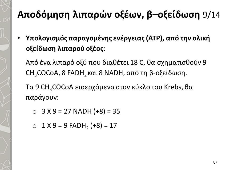 Αποδόμηση λιπαρών οξέων, β–οξείδωση 9/14 Υπολογισμός παραγομένης ενέργειας (ATP), από την ολική οξείδωση λιπαρού οξέος: Από ένα λιπαρό οξύ που διαθέτει 18 C, θα σχηματισθούν 9 CH 3 COCoA, 8 FADH 2 και 8 NADH, από τη β-οξείδωση.