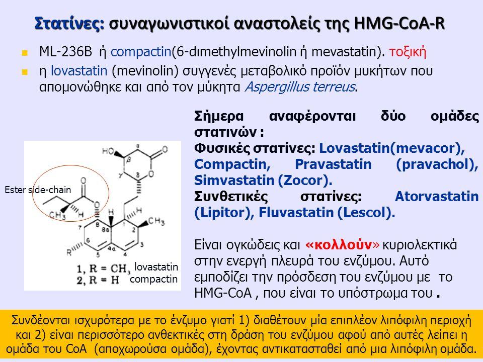 Στατίνες: συναγωνιστικoί αναστολείς της HMG-CoA-R ML-236B ή compactin(6-dιmethylmevinolin ή mevastatin). τοξική η lovastatin (mevinolin) συγγενές μετα