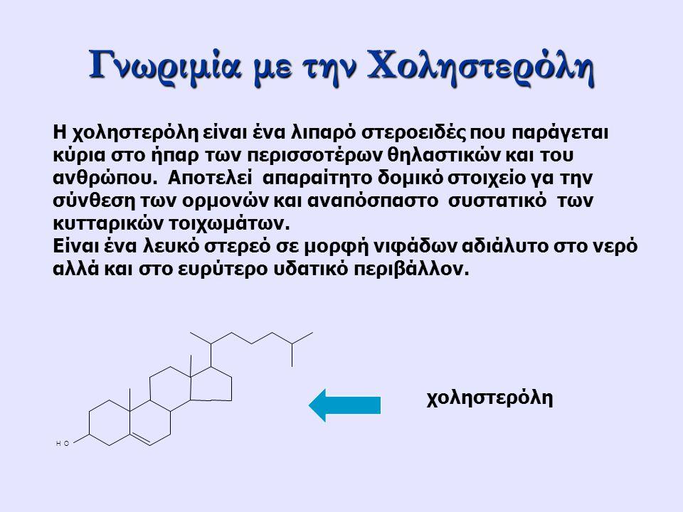 Γνωριμία με την Χοληστερόλη Η χοληστερόλη είναι ένα λιπαρό στεροειδές που παράγεται κύρια στο ήπαρ των περισσοτέρων θηλαστικών και του ανθρώπου. Αποτε