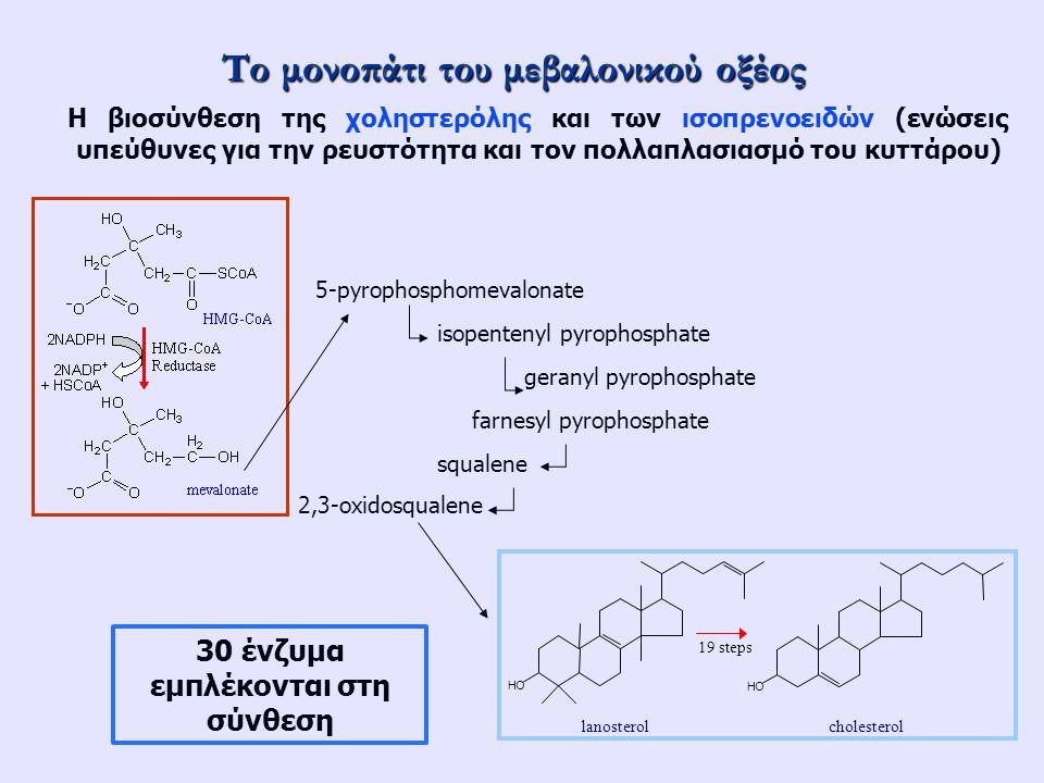 Το μονοπάτι του μεβαλονικού οξέος Η βιοσύνθεση της χοληστερόλης και των ισοπρενοειδών (ενώσεις υπεύθυνες για την ρευστότητα και τον πολλαπλασιασμό του