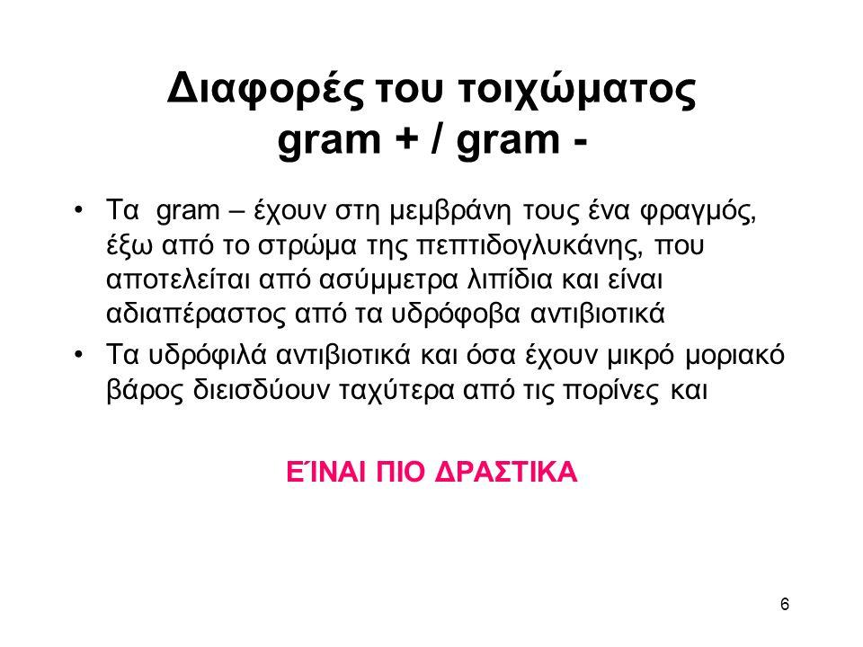 6 Διαφορές του τοιχώματος gram + / gram - Τα gram – έχουν στη μεμβράνη τους ένα φραγμός, έξω από το στρώμα της πεπτιδογλυκάνης, που αποτελείται από ασύμμετρα λιπίδια και είναι αδιαπέραστος από τα υδρόφοβα αντιβιοτικά Τα υδρόφιλά αντιβιοτικά και όσα έχουν μικρό μοριακό βάρος διεισδύουν ταχύτερα από τις πορίνες και ΕΊΝΑΙ ΠΙΟ ΔΡΑΣΤΙΚΑ