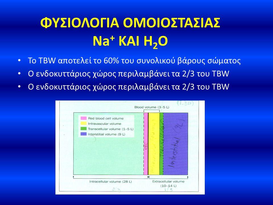 ΦΥΣΙΟΛΟΓΙΑ ΟΜΟΙΟΣΤΑΣΙΑΣ Na + ΚΑΙ H 2 O Posm = 2x[Na + ] + [γλυκόζη]/18 + Ουρία/6 ePosm=2x[Na + ] ePosm = δραστική ωσμωτικότητα του TBW = (εξωκυττάριος διαλύτης + ενδοκυττάριος διαλύτης) / TBW Άρα, 2x[Na + ] = [Na + + K + ] / TBW