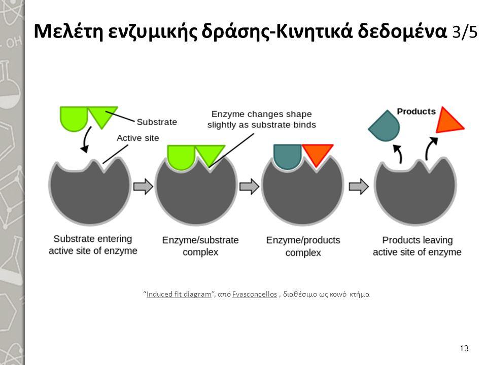 """Μελέτη ενζυμικής δράσης-Κινητικά δεδομένα 3/5 """"Induced fit diagram"""", από Fvasconcellos, διαθέσιμο ως κοινό κτήμαInduced fit diagramFvasconcellos 13"""