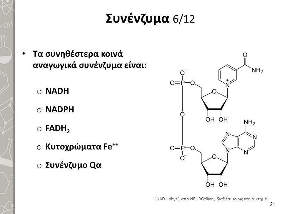"""Συνένζυμα 6/12 Τα συνηθέστερα κοινά αναγωγικά συνένζυμα είναι: o NADH o NADPH o FADH 2 o Κυτοχρώματα Fe ++ o Συνένζυμο Qα """"NAD+ phys"""", από NEUROtiker,"""