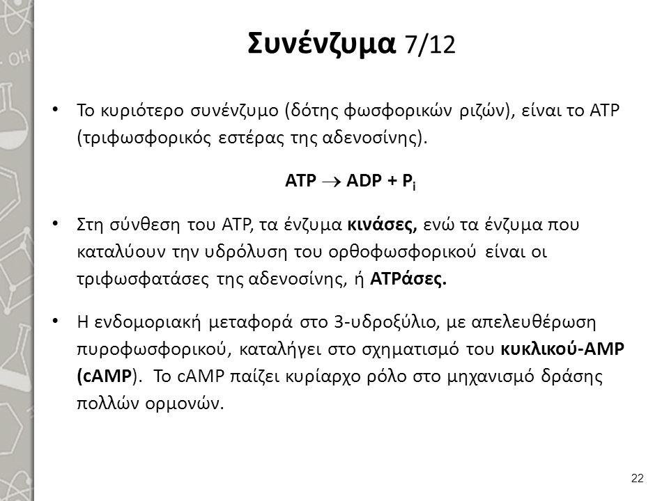 Συνένζυμα 7/12 Το κυριότερο συνένζυμο (δότης φωσφορικών ριζών), είναι το ΑΤΡ (τριφωσφορικός εστέρας της αδενοσίνης). ATP  ADP + P i Στη σύνθεση του A