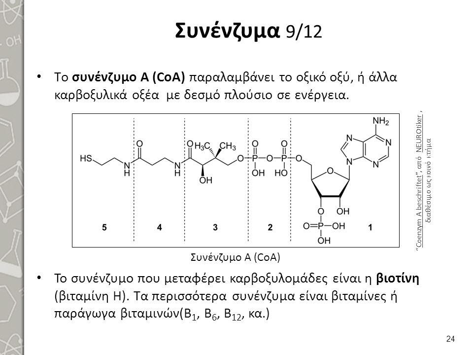 Συνένζυμα 9/12 Τo συνένζυμο Α (CoA) παραλαμβάνει το οξικό οξύ, ή άλλα καρβοξυλικά οξέα με δεσμό πλούσιο σε ενέργεια. Το συνένζυμο που μεταφέρει καρβοξ