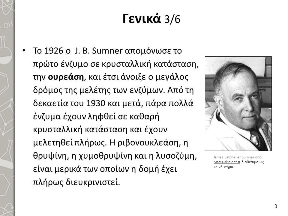 Γενικά 3/6 Το 1926 ο J. B. Sumner απομόνωσε το πρώτο ένζυμο σε κρυσταλλική κατάσταση, την ουρεάση, και έτσι άνοιξε ο μεγάλος δρόμος της μελέτης των ε