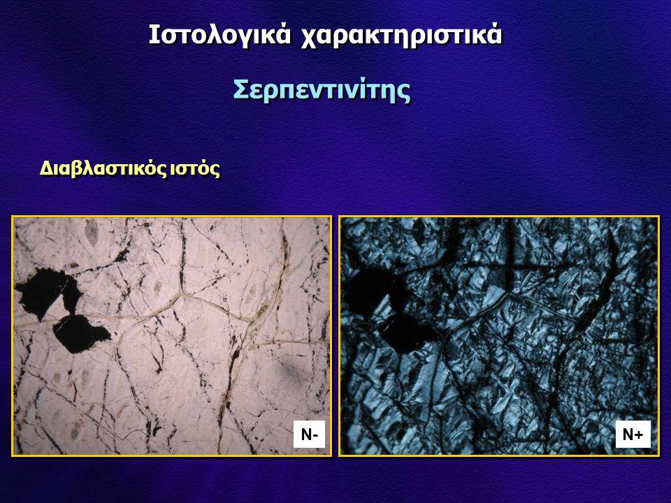 Ιστολογικά χαρακτηριστικά Διαβλαστικός ιστός Σερπεντινίτης N-N-N+
