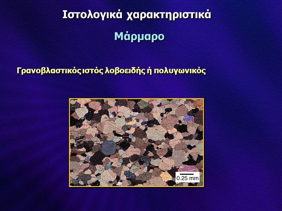 Ιστολογικά χαρακτηριστικά Μάρμαρο Γρανοβλαστικός ιστός λοβοειδής ή πολυγωνικός