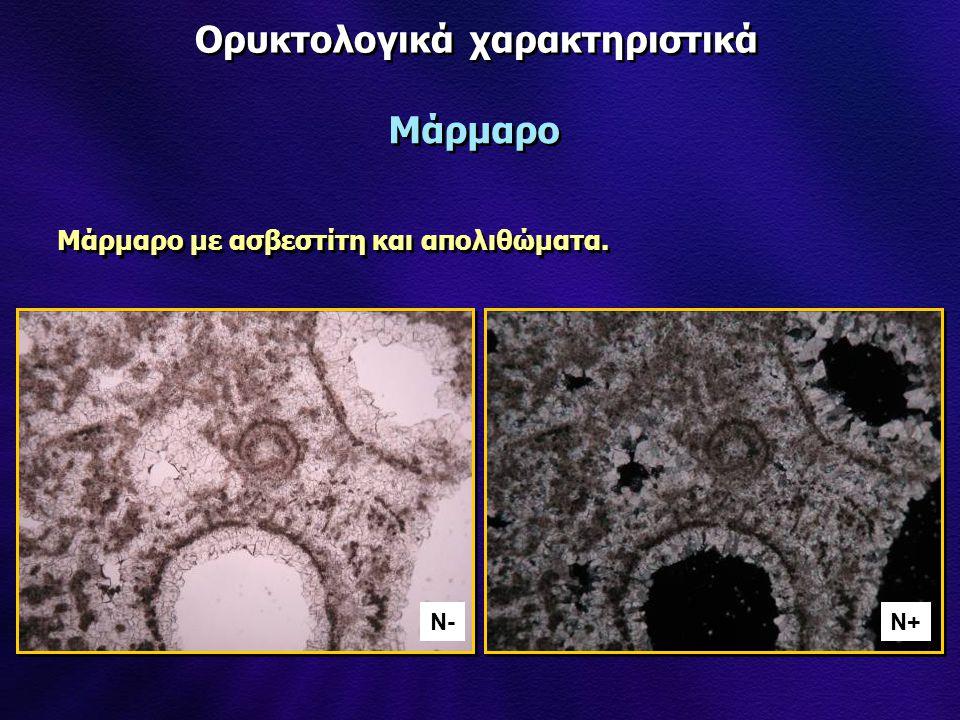 Ορυκτολογικά χαρακτηριστικά Μάρμαρο N-N-N+ Μάρμαρο με ασβεστίτη και απολιθώματα.