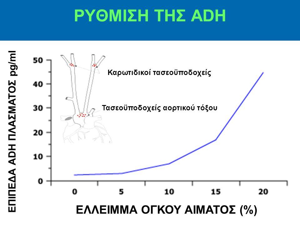 ΔΡΑΣΕΙΣ ΤΗΣ ADH Κύρια επίδρασή της στους νεφρούς είναι η αύξηση της διαβατότητας του Η 2 Ο από την αυλική μεμβράνη των αθροιστικών σωληναρίων με ενσωμάτωση υδατοπορινών-2 στην αυλική μεμβράνη