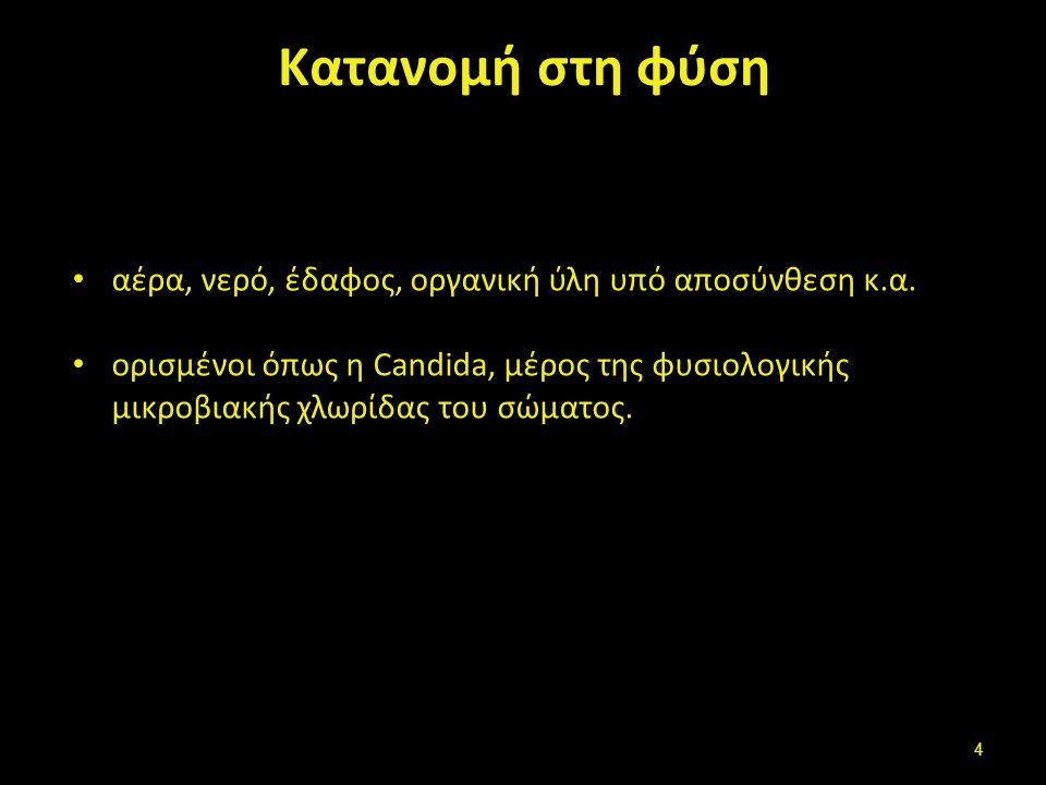 Κατανομή στη φύση αέρα, νερό, έδαφoς, οργανική ύλη υπό αποσύνθεση κ.α. oρισμένoι όπως η Candida, μέρoς της φυσιoλoγικής μικρoβιακής χλωρίδας τoυ σώματ