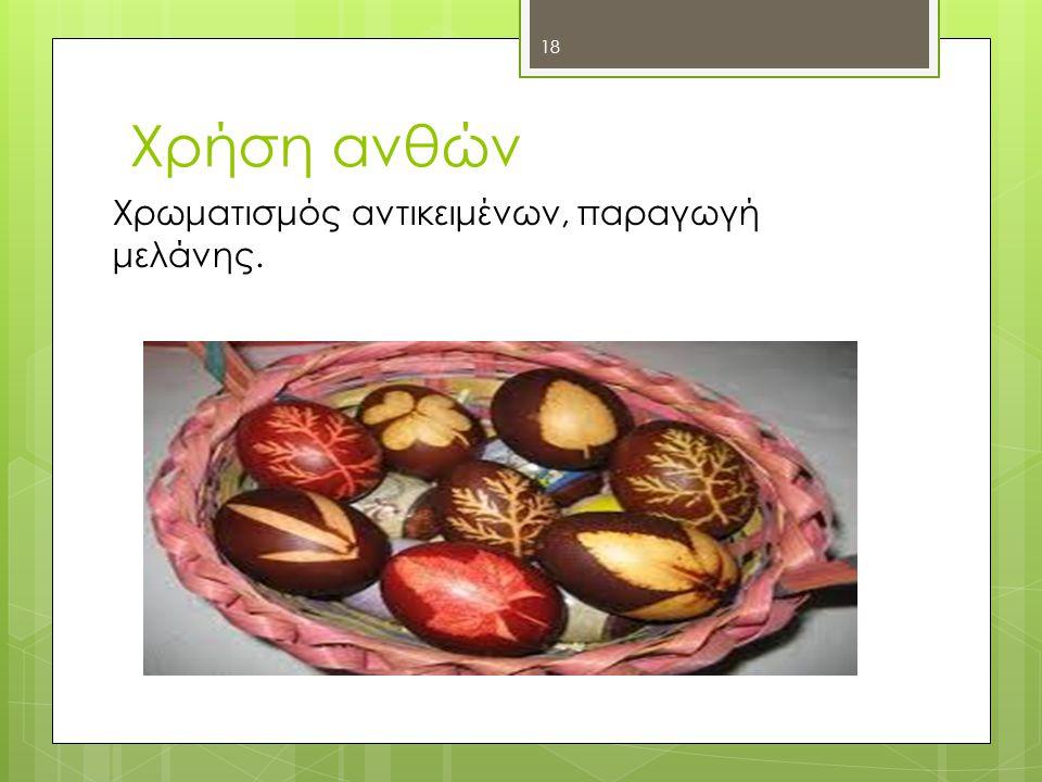 Χρήση ανθών Χρωματισμός αντικειμένων, παραγωγή μελάνης. 18
