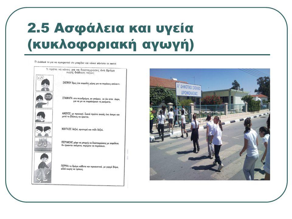2.5 Ασφάλεια και υγεία (κυκλοφοριακή αγωγή)