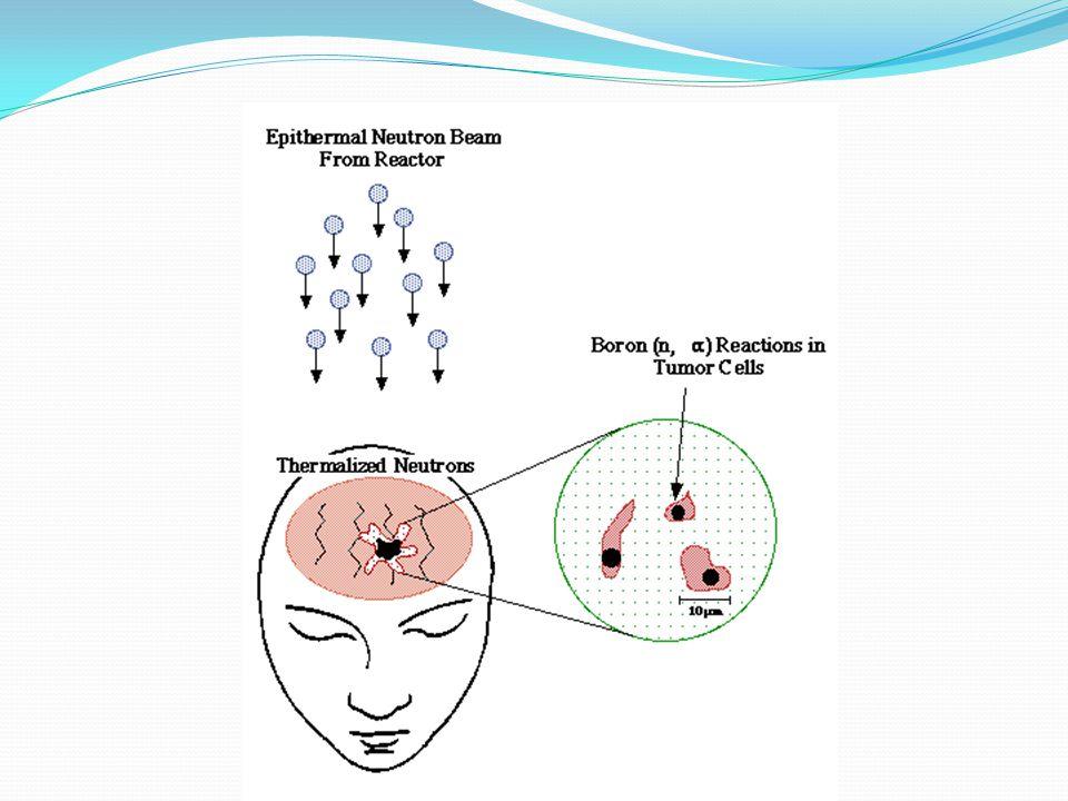 Φορείς του Βορίου Απαραίτητη η εναπόθεση μεγάλου αριθμού ατόμων βορίου ~ 10 9 σε κάθε καρκινικό κύτταρο.