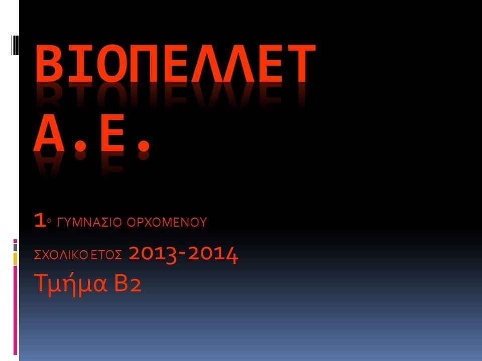 1 ο ΓΥΜΝΑΣΙΟ ΟΡΧΟΜΕΝΟΥ ΣΧΟΛΙΚΟ ΕΤΟΣ 2013-2014 Τμήμα Β2