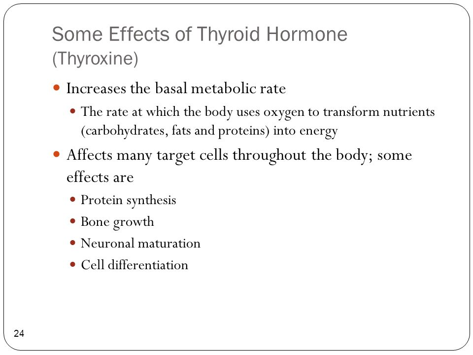 Some Effects of Thyroid Hormone (Thyroxine) 24 Increases the basal metabolic rate The rate at which the body uses oxygen to transform nutrients (carbo