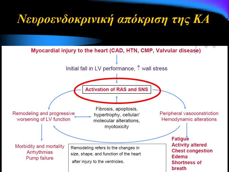 Διουρητικά της αγκύλης του Henle & Θειαζιδικά Μείωση του ενεργού κυκλοφορούντος όγκου αίματος Αύξηση της ποσότητας του Na + που φτάνει στον άπω νεφρώνα Υποκαλιαιμία