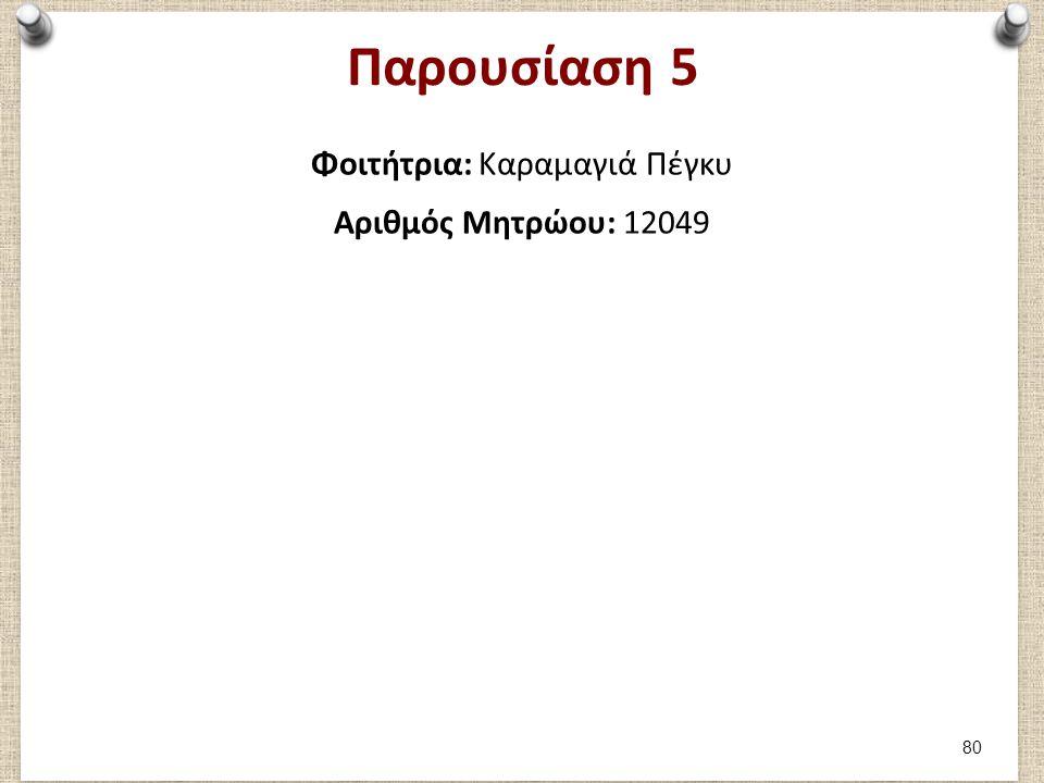 Παρουσίαση 5 Φοιτήτρια: Καραμαγιά Πέγκυ Αριθμός Μητρώου: 12049 80