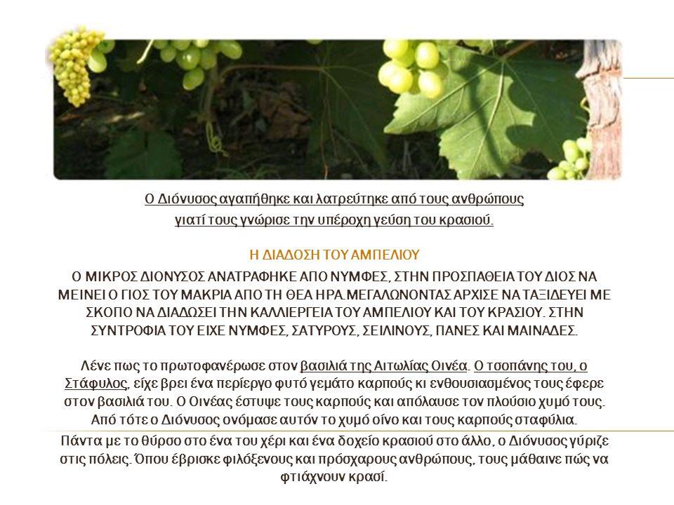 Ο Διόνυσος αγαπήθηκε και λατρεύτηκε από τους ανθρώπους γιατί τους γνώρισε την υπέροχη γεύση του κρασιού. Η ΔΙΑΔΟΣΗ ΤΟΥ ΑΜΠΕΛΙΟΥ Ο ΜΙΚΡΟΣ ΔΙΟΝΥΣΟΣ ΑΝΑΤ