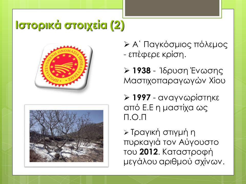  1938 - Ίδρυση Ένωσης Μαστιχοπαραγωγών Χίου  1997 - αναγνωρίστηκε από Ε.Ε η μαστίχα ως Π.Ο.Π  Α΄ Παγκόσμιος πόλεμος - επέφερε κρίση.  Τραγική στιγ