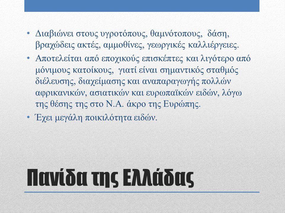 Πανίδα της Ελλάδας Διαβιώνει στους υγροτόπους, θαμνότοπους, δάση, βραχώδεις ακτές, αμμοθίνες, γεωργικές καλλιέργειες. Αποτελείται από εποχικούς επισκέ
