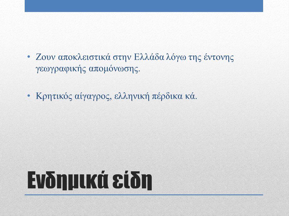 Ενδημικά είδη Ζουν αποκλειστικά στην Ελλάδα λόγω της έντονης γεωγραφικής απομόνωσης. Κρητικός αίγαγρος, ελληνική πέρδικα κά.