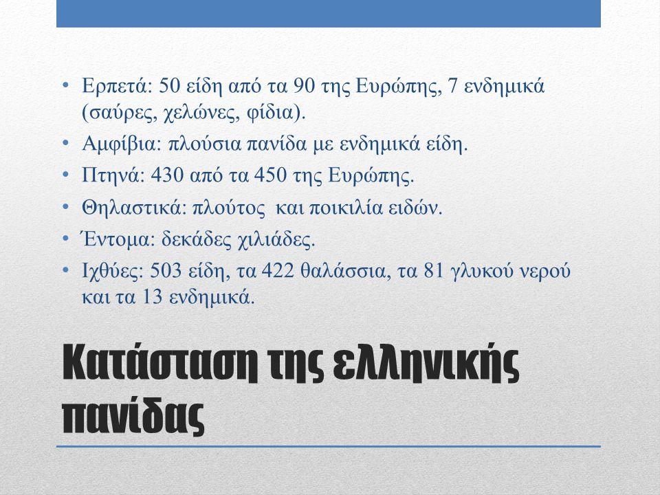 Κατάσταση της ελληνικής πανίδας Ερπετά: 50 είδη από τα 90 της Ευρώπης, 7 ενδημικά (σαύρες, χελώνες, φίδια). Αμφίβια: πλούσια πανίδα με ενδημικά είδη.