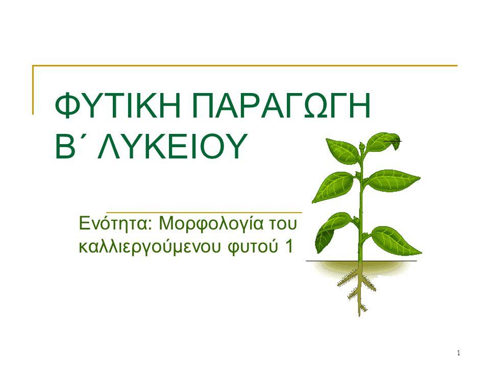 1 ΦΥΤΙΚΗ ΠΑΡΑΓΩΓΗ Β΄ ΛΥΚΕΙΟΥ Ενότητα: Μορφολογία του καλλιεργούμενου φυτού 1