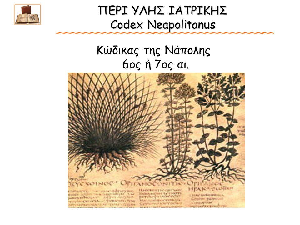 ΠΕΡΙ ΥΛΗΣ ΙΑΤΡΙΚΗΣ Codex Neapolitanus ΠΕΡΙ ΥΛΗΣ ΙΑΤΡΙΚΗΣ Codex Neapolitanus Κώδικας της Νάπολης 6oς ή 7ος αι.